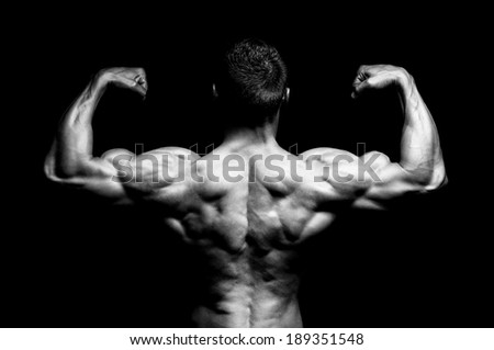 The musculare male back on black background. - stock photo