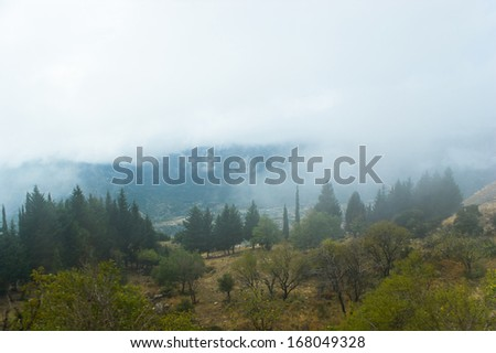 The mysterious weather with hard fog in the valley between the Parnassus mountains, Greece.