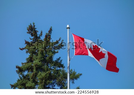 The national Canadian flag of Canada CA - stock photo