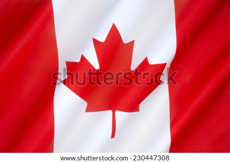 The National Flag of Canada - Adopted in 1965 to replace the Union Flag, it is the first ever specified by statute law for use as the Canadian national flag. - stock photo