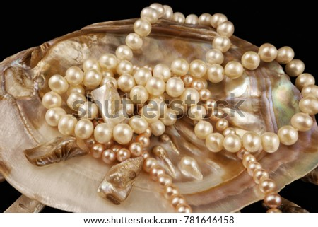 The  natural pearl beads lying on  the surface  of the seashell