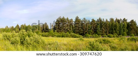 The Nature Of Russia. Wild field of flowers. Panorama pieced together from multiple photos.