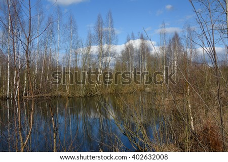 The nature of spring in the forest. Reflection of trees in water. The lake and the birch grove in early spring #5 - stock photo