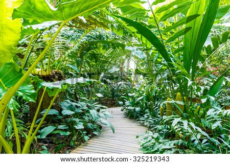 Picturesque Forest Garden Stock Images Royaltyfree Images  Vectors  With Marvelous The Nature Trail In The Rain Forest Garden With Charming Garden Centre Hermitage Also Garden Planters Ireland In Addition Melbourn Garden Centre And Garden Sleepers For Sale As Well As Garden Sheds Sale Additionally Garden Design Journal From Shutterstockcom With   Marvelous Forest Garden Stock Images Royaltyfree Images  Vectors  With Charming The Nature Trail In The Rain Forest Garden And Picturesque Garden Centre Hermitage Also Garden Planters Ireland In Addition Melbourn Garden Centre From Shutterstockcom