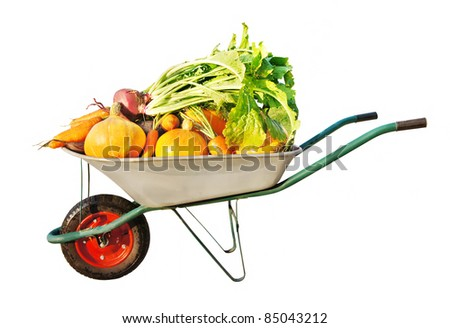 The new harvest. Many different vegetables lie in the garden cart. Isolated on white background - stock photo