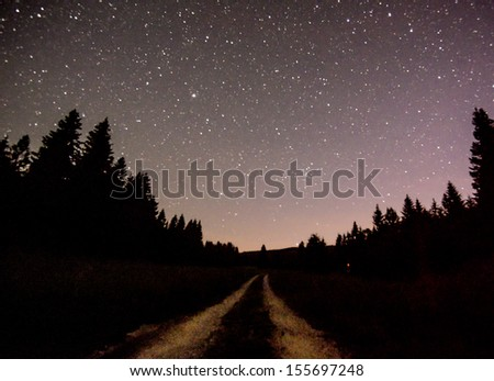 the  night - stock photo