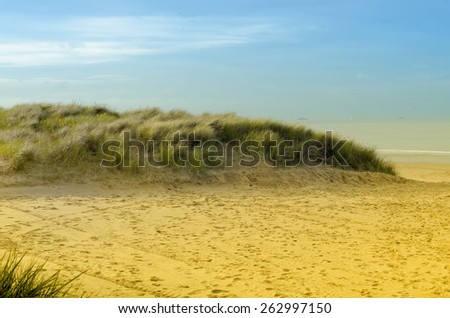 the northern beaches - stock photo