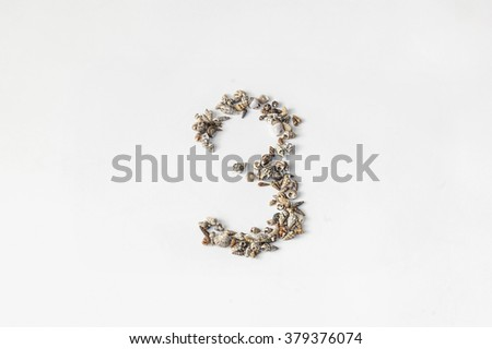 The number three of the shells - stock photo