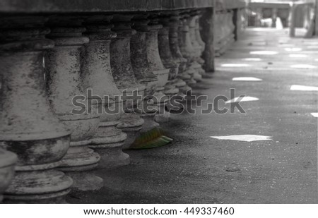 The old pillar with the green leaf - stock photo