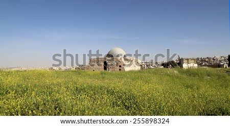 The old Umayyad Palace, one of the well-preserved buildings at Jabal al-Qal'a, the old roman citadel hill of Jordan's capital Amman - stock photo