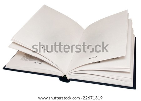 The open book, empty pages.Isolated on a white background. - stock photo