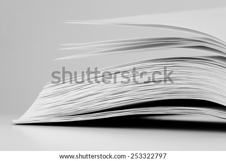 The opened book with blank sheets
