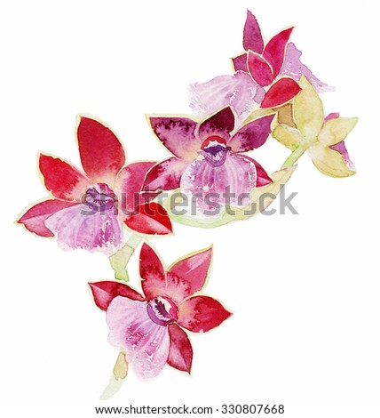 the orchid flower watercolor hand drawing painting on the wallpaper isolated on the white background