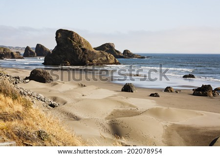 The Oregon coast sand dunes in the front with brown grass and footprints. mid picture the beach with some water and rocks. Back the large rocks that hug the coast line. Waves in the ocean cloudy day. - stock photo
