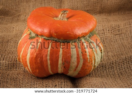 The ornamental pumpkins do not eat, are used to decorate the house, not only during Halloween - stock photo