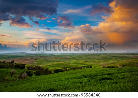 The Palouse on a Summer Evening