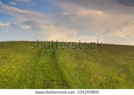 The path in the flower meadow under cloudy dawn sky. Carpathian Mountains. - stock photo