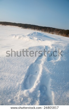 The path on the tundra in the snow - stock photo