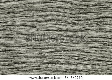 The pattern on the wood floor/ Patterns on wood / Cracks on the boards. /Cut of old trunk is photographed closely./Background board Colorful plywood  / Roy depth of cracked wood.(black and white) - stock photo