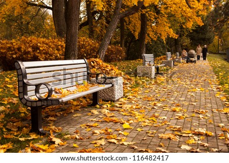 The perspective of the row of benches in autumn park while fall with walking people in background