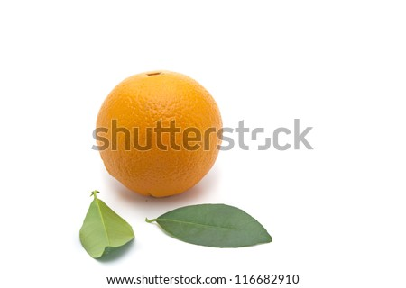 the piece of orange on white background.