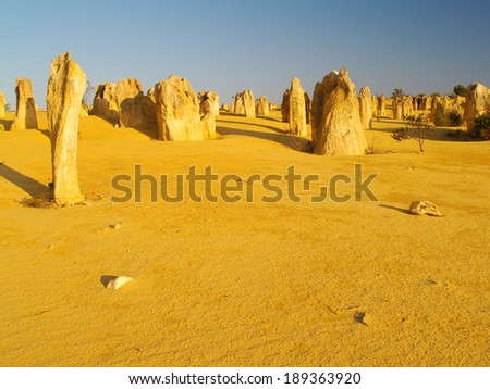 The Pinnacles Desert in Western Australia - stock photo