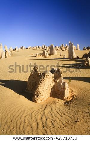 The Pinnacles in Nambung National Park, Western Australia. - stock photo