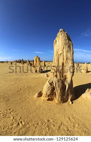 The Pinnacles in Western Australia - stock photo
