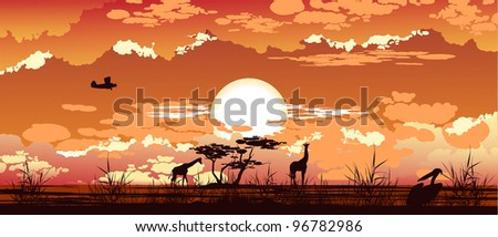 The plane flies at dusk over the African savanna - stock photo