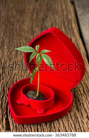 The plants grow from seeds placed on the heart to tell the love tree and the world - stock photo