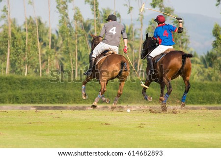 The polo players stopped their two belly horses while competing.