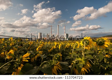 the power station with sunflower field