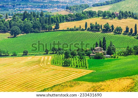 The present a provincial landscape of Tuscany, Italy, Europe. - stock photo