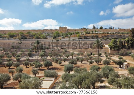 "The protective wall of Jerusalem and the walled in ancient times the famous ""Golden Gate"". Huge garden of olive trees - stock photo"