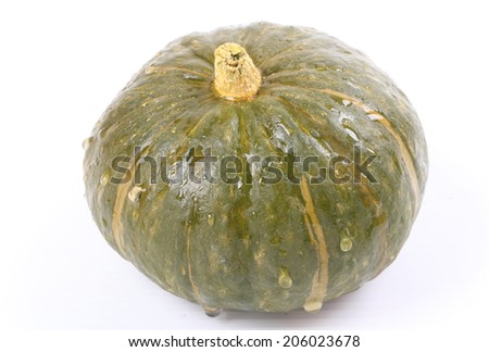 The pumpkin white isolated background.