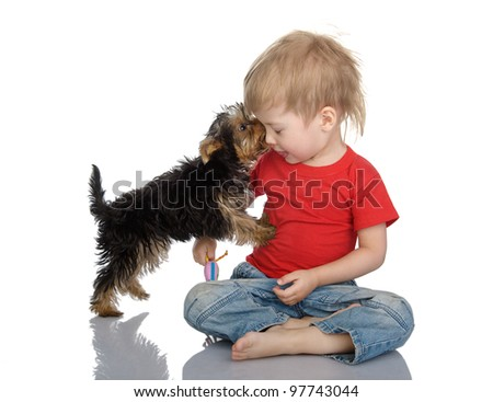 The puppy licks the child. isolated on white background - stock photo
