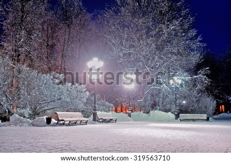 The quiet evening in the park - winter landscape, soft focus processing - stock photo