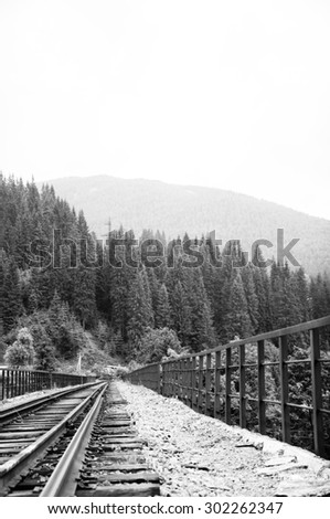 the railroad goes into the woods