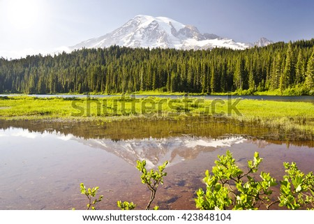 The Reflection Lake and Mt Rainier - stock photo
