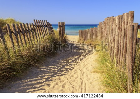 The Regional Natural Park Dune Costiere (Torre Canne): fence between sea dunes. BRINDISI (Apulia)-ITALY- The park covers the territories of Ostuni and Fasano along eight kilometers of coastline. - stock photo