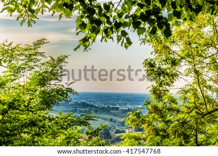 the relaxing view, thorugh green branches, of the fields of olive trees and peach trees of the hilly countryside of Emilia Romagna in Italy