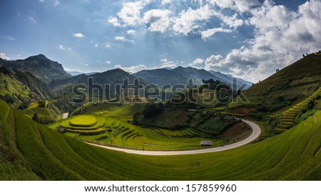 The rice field at Mu Cang Chai , Yen Bai , Vietnam