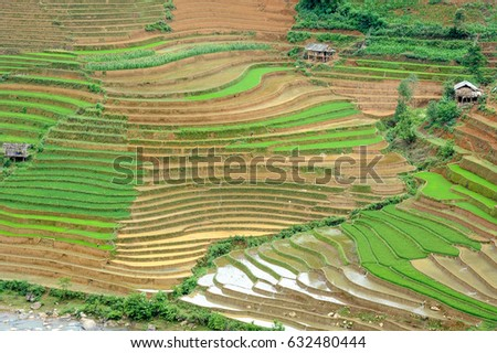 The rice terraces of Cao Pha Commune. Yen Bai Province, Vietnam