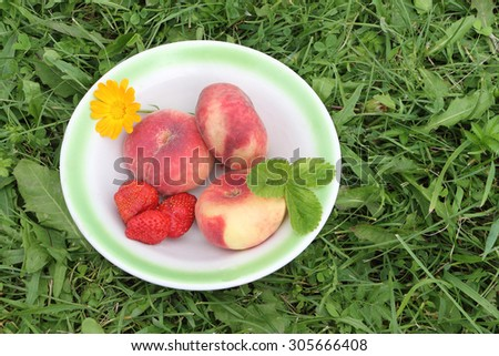 The ripe peaches and strawberry lying in a plate on a grass in a garden - stock photo