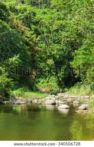 The river - stock photo