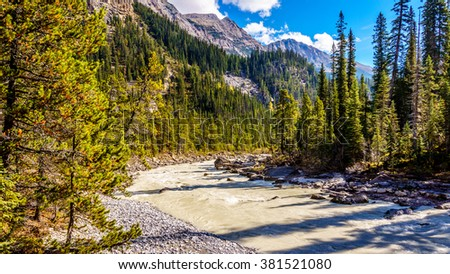 The River flowing from Takakkaw Falls to the Yoho River in Yoho National Park in the Rocky Mountains in British Columbia, Canada. - stock photo