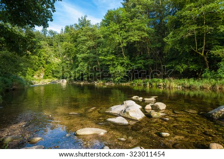 The river Murg in the Murg valley near Forbach, Black Forest, Baden-Wurttemberg, Germany, Europe