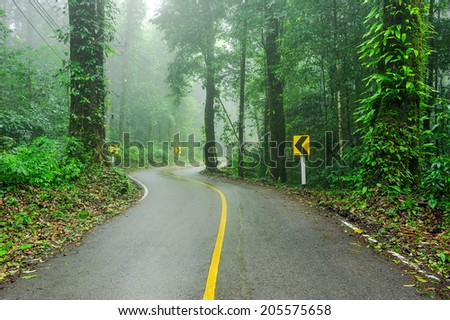 The road cuts through the rain forest. - stock photo