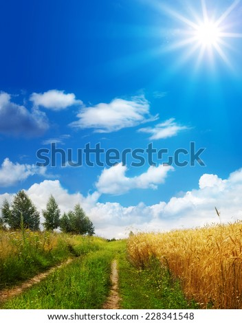 the road in rural areas - stock photo