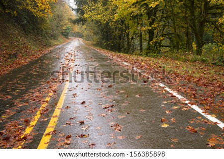 The road is slick and wet during fall rain autumn leaves from season change highway travel - stock photo